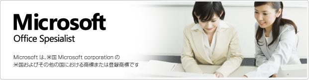 Microsoft Office Spesialist